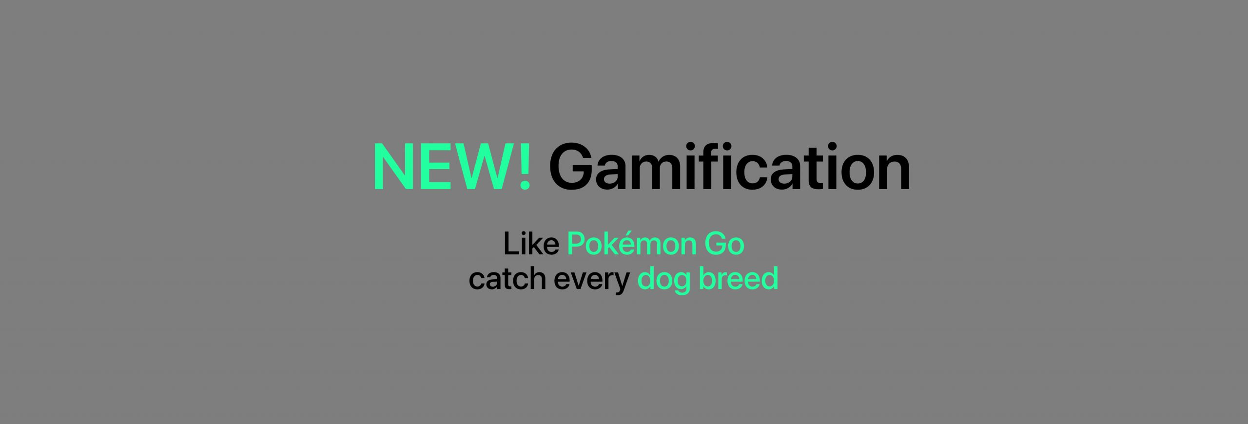 Gamification Update